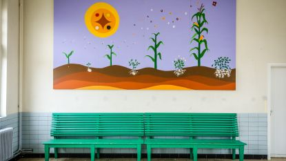 """Knap muurschilderij in de 'Stoasje': """"Boodschap uitdragen om zorgzaam met de natuur om te springen"""""""
