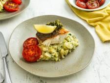 Restaurants Scheveningen bieden 'te weinig' vis uit Noordzee aan: 'Onze vis wordt ondergewaardeerd'