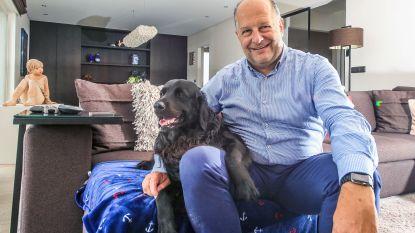 Boris schittert als 'reclamehond'