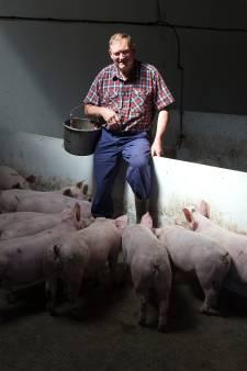 Varkensboer én 42 jaar raadslid: Henk Meerdink stond altijd 'kort bij de mensen'