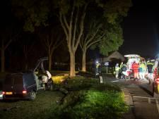 Busje rijdt bij Werkhoven op boom, bestuurder zwaargewond
