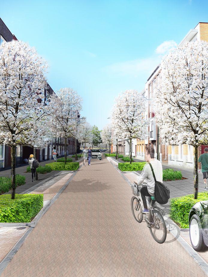 Artist impression van de heringerichte Menno van Coehoornstraat met de Magnolia's in bloei.