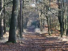 Utrechtse wandelroutes dingen mee naar titel Wandelroute van het Jaar