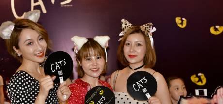 Katten Britse musicalhit CATS spinnen, likken aan de lippen en geven kopjes