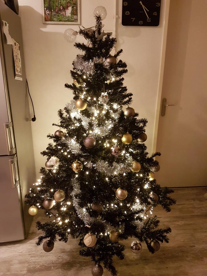 sinds begin november staat deze fraai uitgedoste kerstboom bij brigitte van der ploeg uit roosendaal in