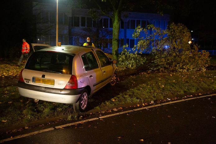 Automobiliste vliegt uit de bocht in Roosendaal en velt boom.
