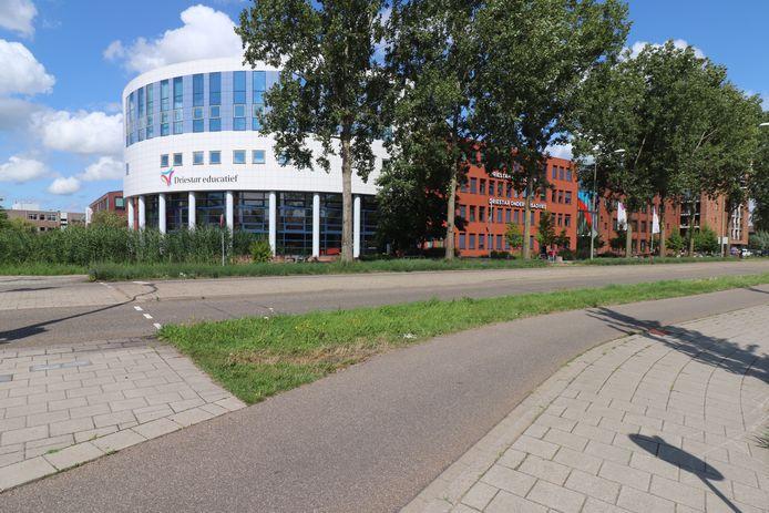 Het gebouw van hogeschool Driestar in Gouda.