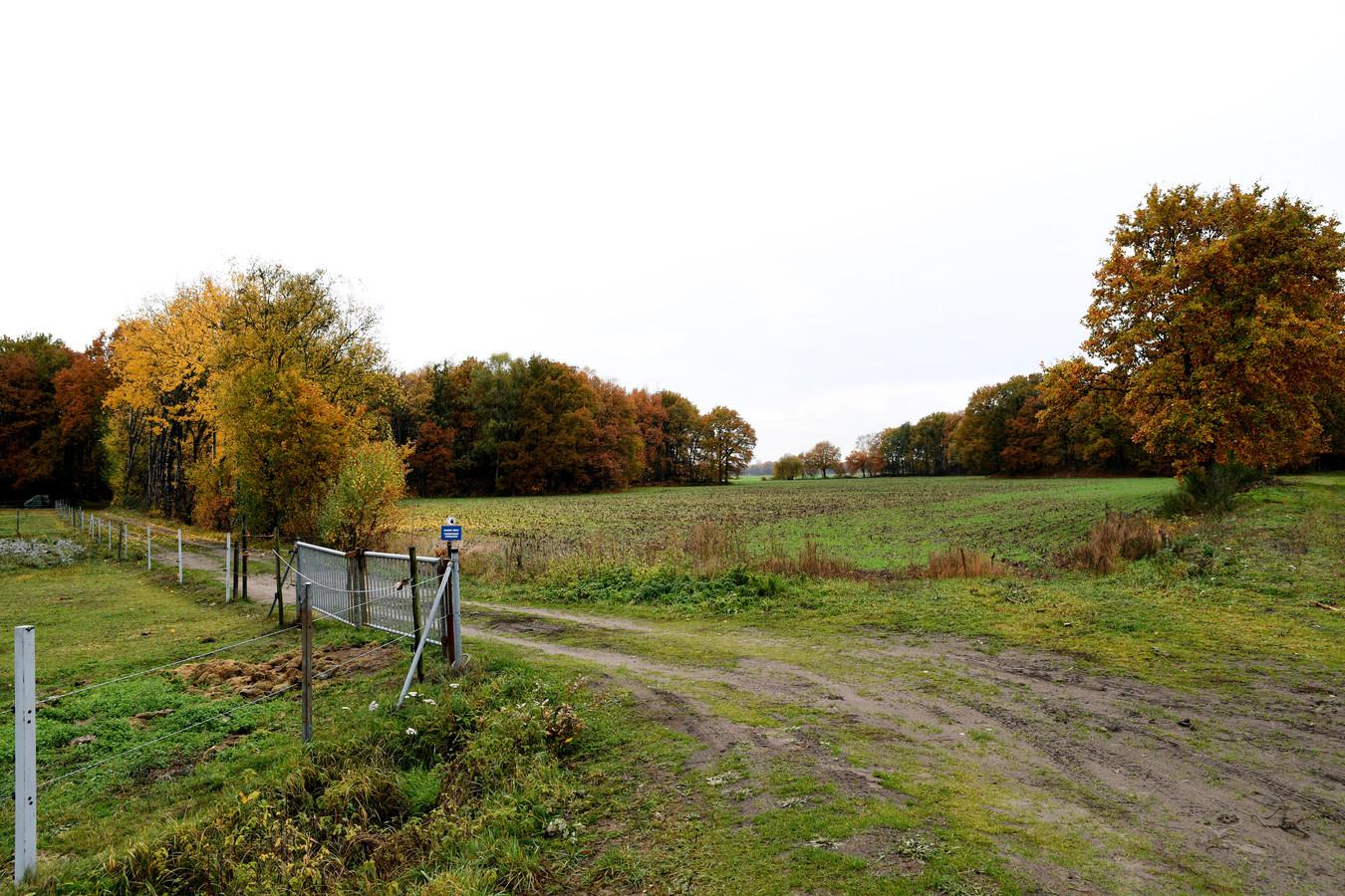 Natuurgebied het Blik richting Oosterhout, Everdenberg.