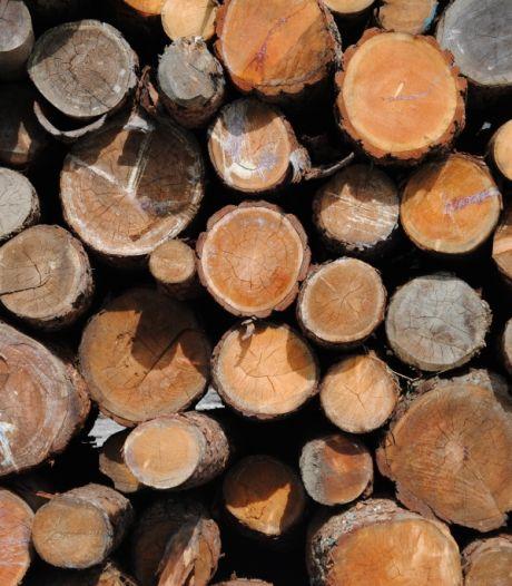 Hilvarenbeekse houthandelaar mag tot pensioen vanuit huis blijven handelen