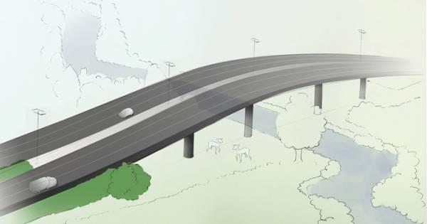 Brabantse overheidsprojecten in gevaar door stikstofcrisis | Tilburg eo - BD.nl