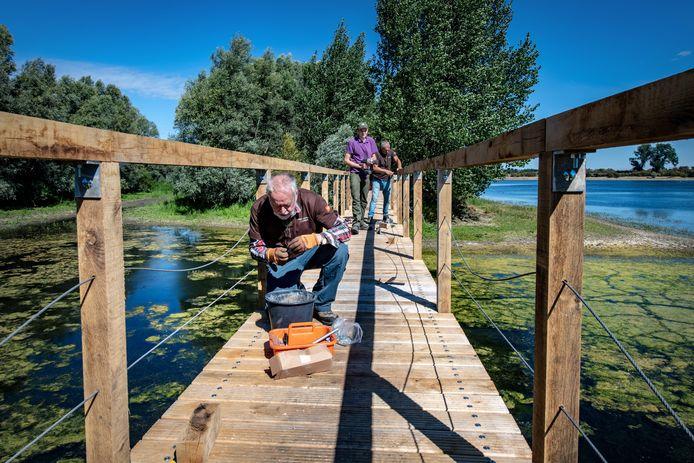 Vrijwilligers Nico Heemskerk (76) en Leo Holleman (66) en boswachter Wesley Huisman leggen de laatste hand aan de brug over een nevengeul van de Bisonbaai.