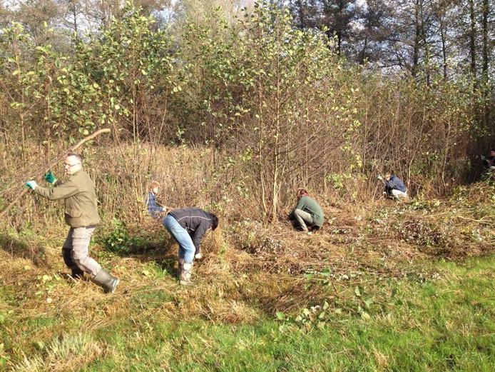 Vrijwilligers bezig om een haast dichtgegroeide poel weer open te maken. Foto DG