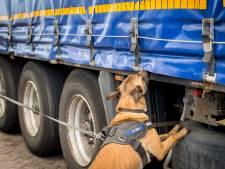 Dertien illegalen in trailer met autobanden Hoek van Holland