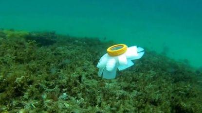 Robotkwal moet koraalrif beschermen