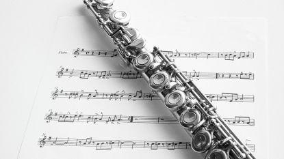Muzikale dieven weg met dwarsfluit en enkele Ierse fluiten
