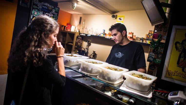 Een cannabisclub in Barcelona. De club is alleen toegankelijk voor leden. Wie lid wil worden moet 21 jaar of ouder zijn, in Spanje wonen en worden geïntroduceerd door een ander lid. Beeld null
