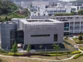 """Le labo de Wuhan se défend d'avoir libéré le virus: """"Même pas un moustique"""""""