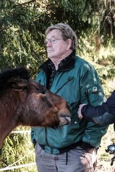 Woede om 'gerichte aanslag' met schot hagel op pony Diet