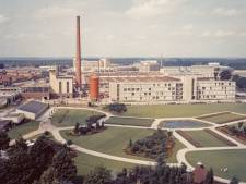 Gloeilampplantsoen door Eindhoven terecht aangewezen als blijvend groen
