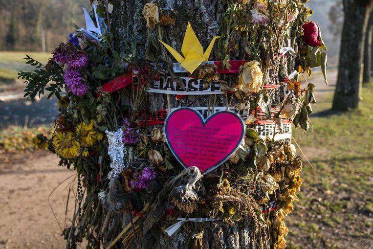 De rouwboom waar het lichaam van Maria in het water gevonden werd.
