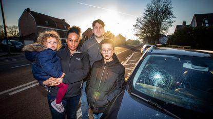 """""""We hebben een heuse schrik gepakt"""": doorgedraaide man vernielt tiental auto's in Lanaken"""