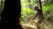 Noorwegen schort donaties aan Amazonefonds op na geschil met Brazilië