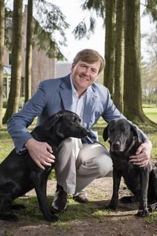 Nieuwe foto's van jarige koning Willem-Alexander