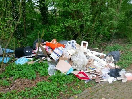 Recreatiegebied de Hollandse Biesbosch geteisterd door vernielingen
