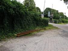 Dorst Trilt wil alle verzet tegen treinoverlast bundelen