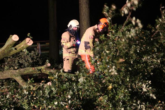 De brandweer, hier bezig aan de Espelodijk in Holten, was de hele nacht druk met meldingen van stormschade.