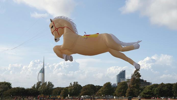 Naast het Twentse Ros namen Herman en Ina nog een paard mee naar Engeland.