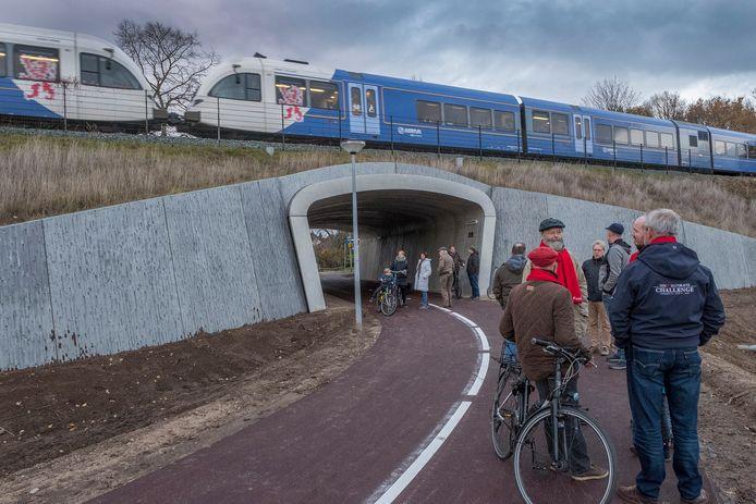 Arrivatrein tussen Cuijk en Nijmegen.