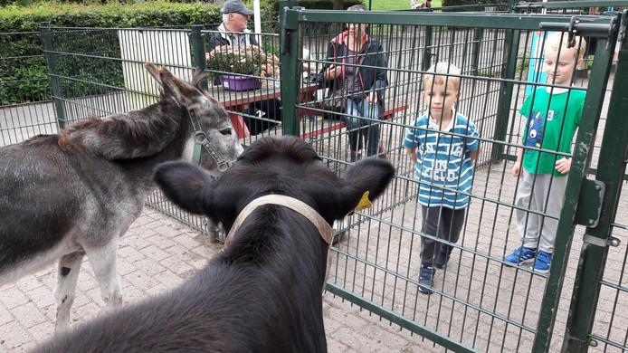 Yorick en Laurens kijken graag naar dieren