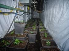 Gevonden hennepkwekerij Tilburg: buitengewoon goed verstopt, maar levensgevaarlijk