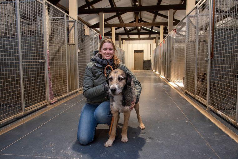 Eline Ghekiere van Animal Trust in haar pension. Ook het nieuwe asiel zal er ongeveer zo uitzien.