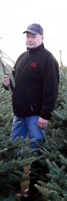 Kerstboomkweker voor tweede jaar op rij dupe van 'kerstboomterrorist'