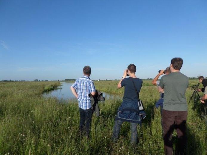 Tijdens een excursie konden mensen zelf zien en horen dat er al veel weidevogels zijn neergestreken