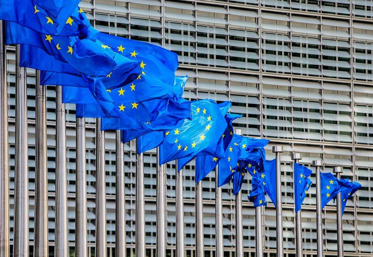 Er moeten duidelijkere regels komen voor de toewijzing van subsidies door ngo's aan derden, concludeert de Europese Rekenkamer.