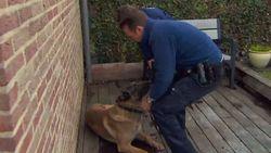 De Buurtpolitie: politiehond Barry neergeschoten bij Koen thuis!