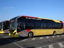 Onze bus hybrides retirés du réseau TEC après un incendie
