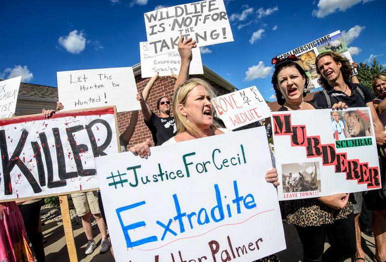 Dierenrechtenactivisten protesteren tegen het afschieten van leeuw Cecil.