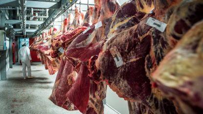 Slachthuizen lijken besmettingshaarden van coronavirus: is het vlees nog veilig?