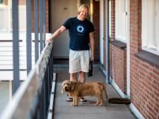 In coronatijd gekochte puppy's nu vaker alleen thuis: 'Kans op eenzame honden met panische verlatingsangst'