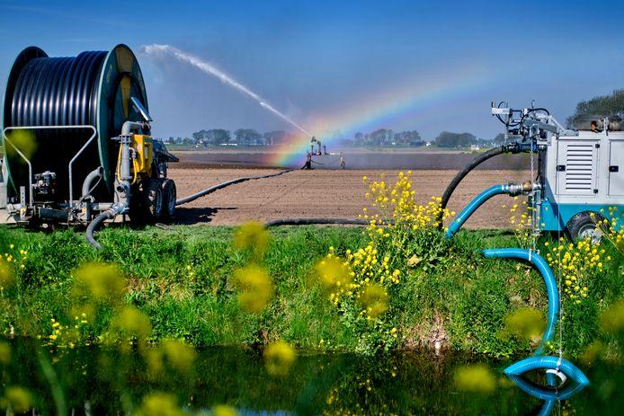 Boeren, zoals hier bij Heinenoord, pompen water uit de sloot. Sommigen doen dat illegaal, stelt Natuurmonumenten.