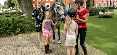 Spreekbeurt met paard in Helvoirt