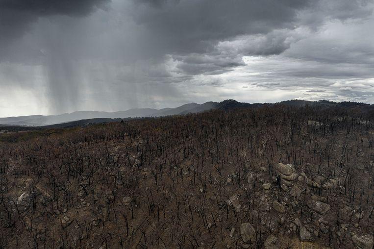 Regenbuien boven een uitgebrand gebied in de buurt van Tamworth in New South Wales in Australië
