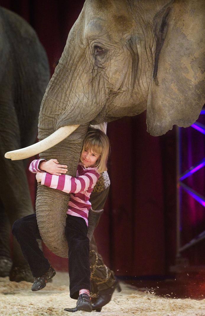 Een meisje uit het publiek hangt donderdag aan de slurf van een olifant.