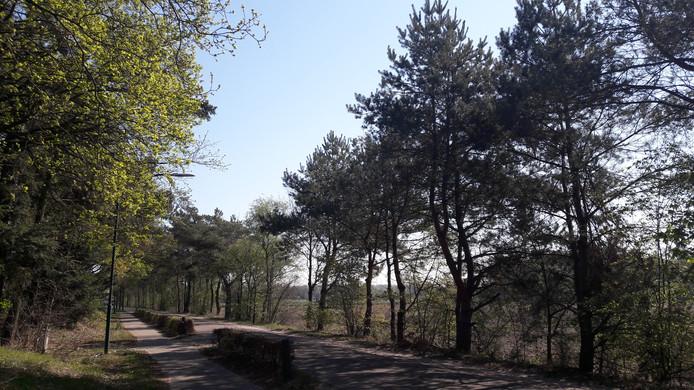 De Molenstraat in Riethoven.