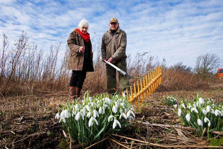Nieteke Roeper en Kees Kikkert in de tuin van Kees tussen de sneeuwklokjes.  Beeld Olaf Kraak