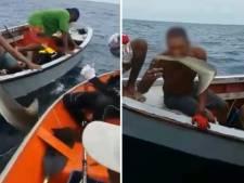 Boze reacties: Curaçaose vissers ontvinnen lachend levende haai